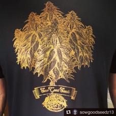 Sow Good Seeds T-shirt