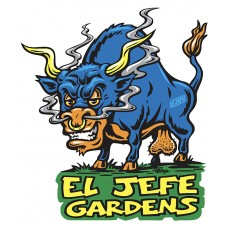 *FREE El Jefe Garden logo T-Shirt with every purchase of two or more packs  or Free 4 seed pack of Junkyard Dog with every purchase of his chem work (WHILE SUPPLIES LAST)
